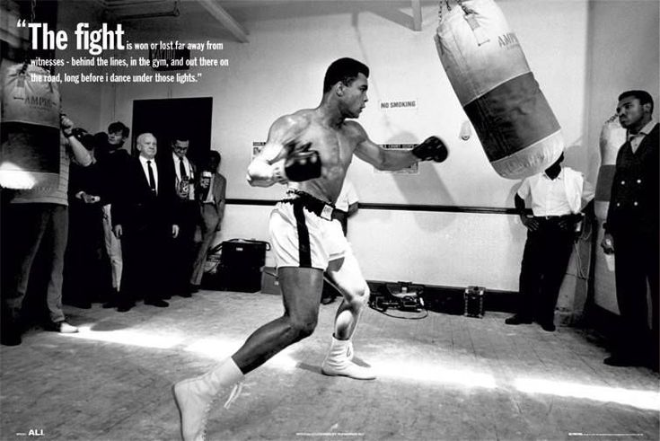 boxing and fighting quotes